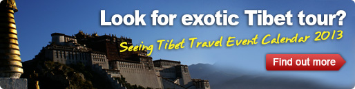 Tibet travel event calendar 2012